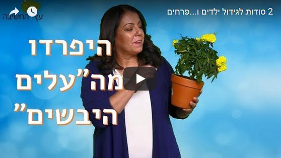 שני סודות לגידול ילדים ו…פרחים